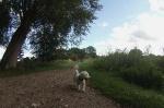 Kleine-Runde-mit-Hund-durch-Pelzerhaken (38)