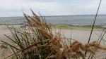Suedwestwind in Rettin 18-08-2014